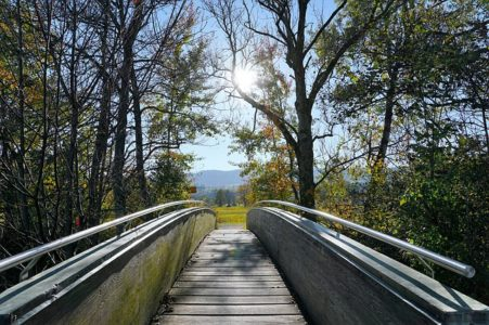 Right Sellers Path to Probate